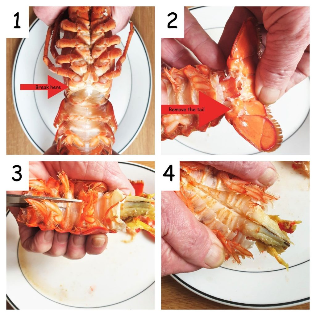 Collage of 4 images displaying how to remove the meat from the lobster tail.